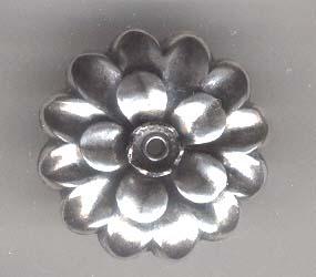 Silwar06559